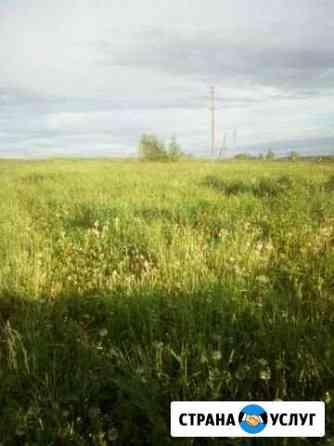Трава для покоса бесплатно Сафоново