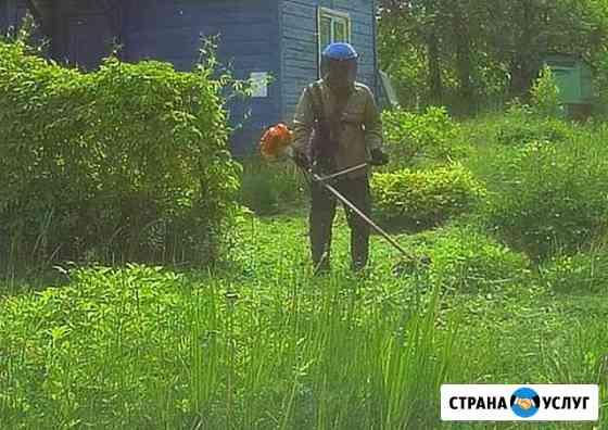 Покос травы Кохма