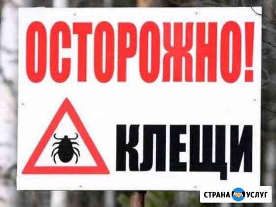 Обработка участка от клещей Рыбинск