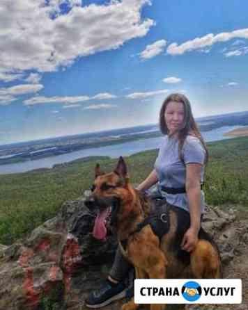 Кинолог Дрессировка собак Челябинск