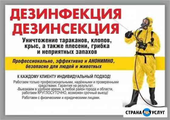 Уничтожение клопов тараканов блох муравьев крыс Брянск