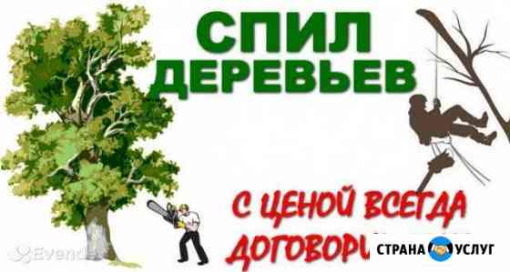 Спил деревьев Обнинск