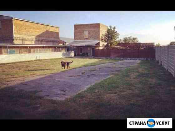 Гостиница для животных Симферополь