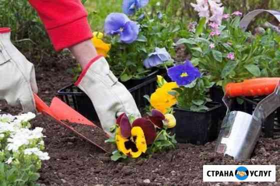 Садовник Воронеж