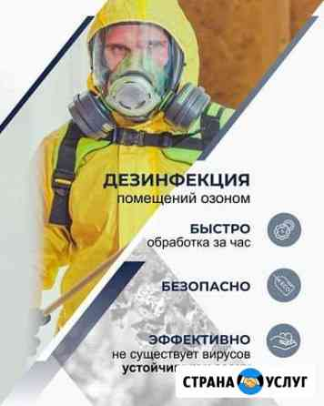 Озонирование Удаление запаха и дезинфекция Озоном Махачкала