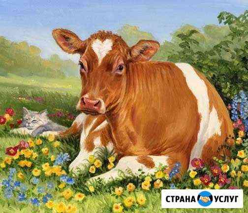 Конский, Коровий, Перегной Новосибирск