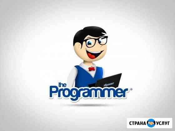 Программист с выездом на дом,можно по договору гпх Чита
