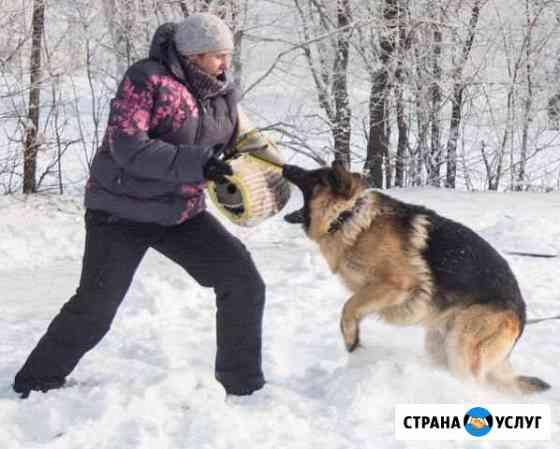Дрессировка собак Новосибирск
