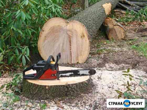 Спил, снос деревьев Иркутск