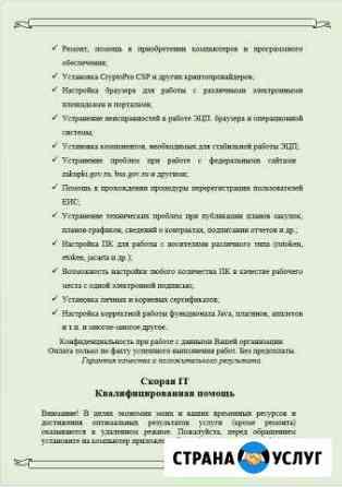 Квалифицированная IT скорая помощь Емельяново