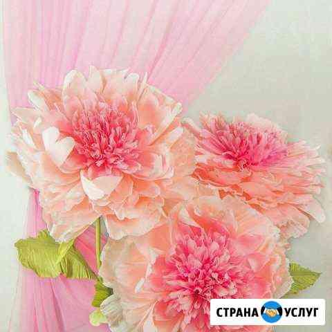 Ростовые цветы Санкт-Петербург