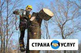 Спил деревьев, кустарников, веток, распилка на чур Иркутск