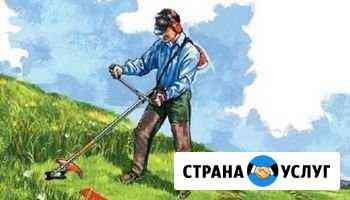 Покос травы Осташков