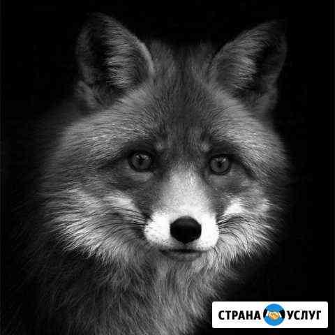 Ремонт Настройка Чистка пк помощь в покупке сборка Иркутск