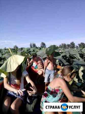 Экскурсии на лотосовые поля Камызяк