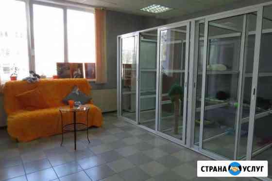 Зоогостиница (передержка) животных Тольятти