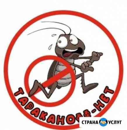 Уничтожение тараканов, травля клопов,комаров Балаково