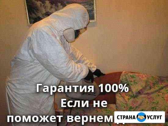 Уничтожение клопов тараканов блох обработка Ангарск