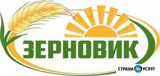 Закупаем зерновые, крупяные, масличные, отходы Барнаул