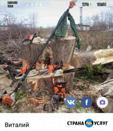 Спил, Кронирование деревьев Пермь
