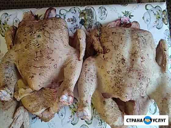 Мясо бройлеров Воробьевка