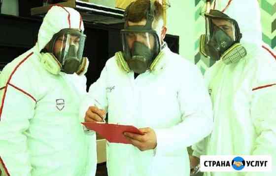 Дезинфекция на любых объектах Иваново