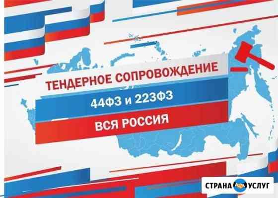 Тендерное сопровождение (44 и 223 фз) Мурманск