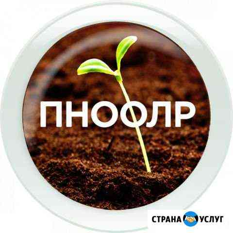 Составление пноолр/ разработка экологической докум Челябинск
