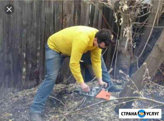 Спил деревьев кронирование утилизация веток Кисловодск