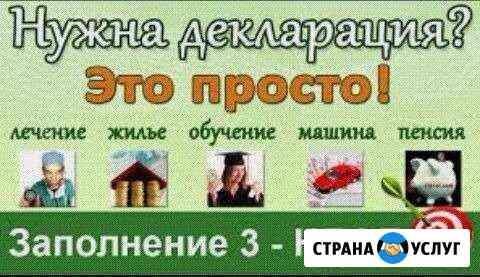 Декларация Нижневартовск