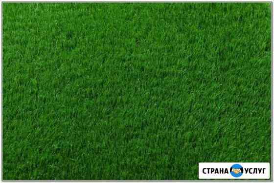Скошу траву, кустарник, покос травы триммером Красноярск