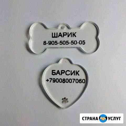 Адресники для собак/кошек Александров