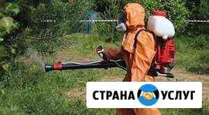 Обработка от клещей, комаров, блох Владимир Владимир