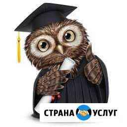 Регистрация ип и ооо без госпошл, Быстро и удобно Брянск