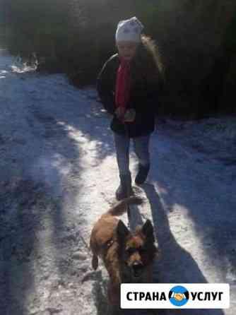 Выгул собак Барнаул