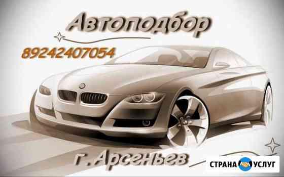 Профессиональная помощь в подборе автомобиля Арсеньев