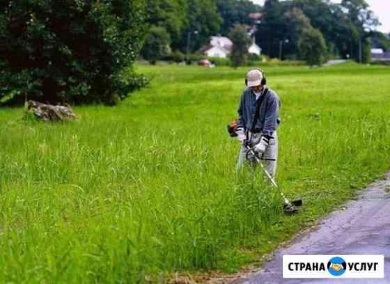 Покос травы Вязники