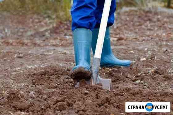 Скидаю уголь, вскопаю огород Черногорск