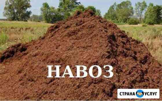 Навоз Чебоксары