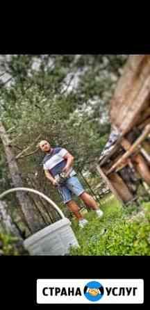 Спил деревьев,расчистка дачных участков под строит Брянск