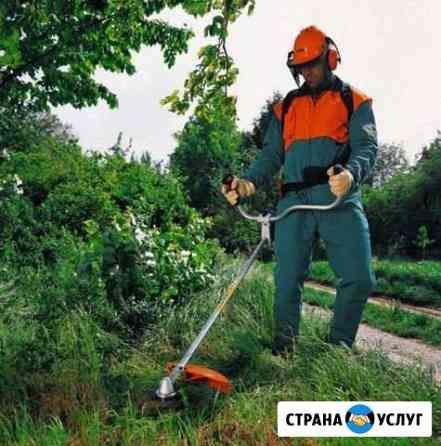 Сад, благоустройство Севастополь