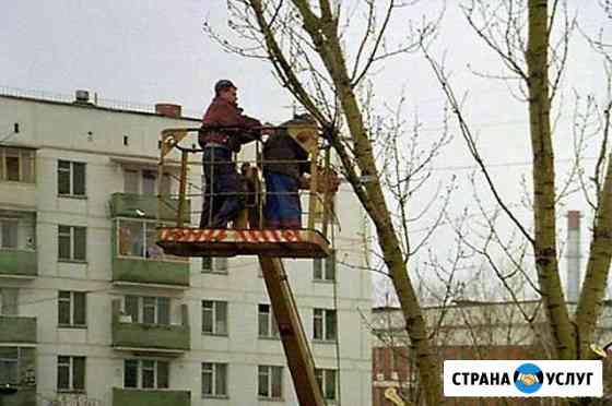 Спил деревьев,кронирование Челябинск