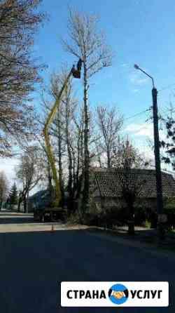 Удаления деревьев Боровск