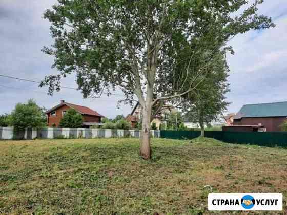 Покос травы. спил деревьев Калининград