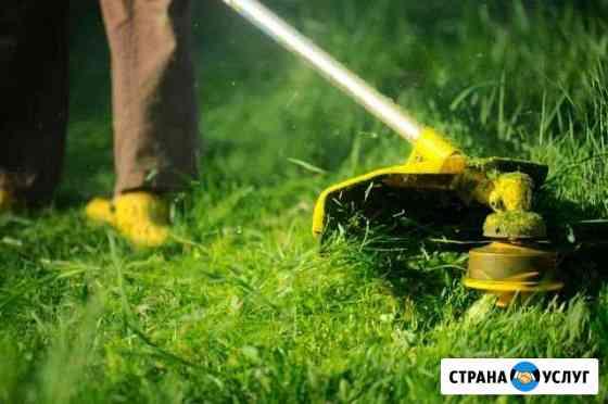 Покос травы Владимир