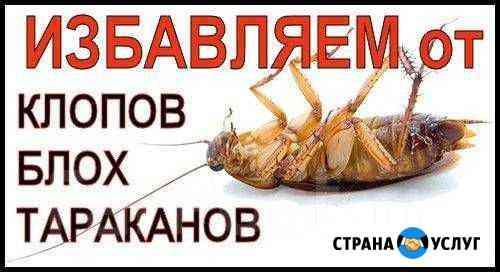 Уничтожения насекомых Рязань