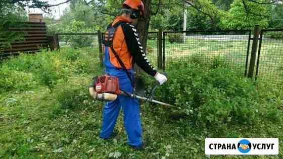 Покос травы, вырубка кустов, уборка муссора Клинцы