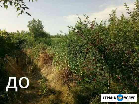 Расчистка участка, покос травы, спил деревьев Энгельс