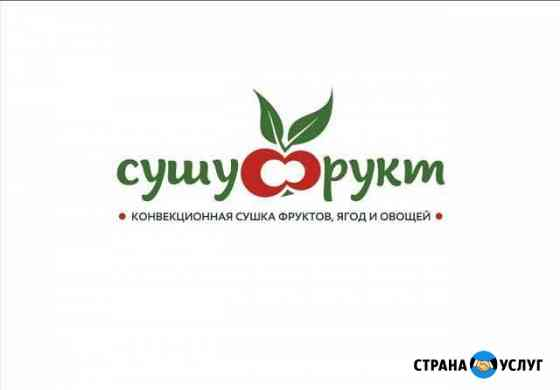 Промышленная сушка ягод, фруктов и овощей Борисоглебск