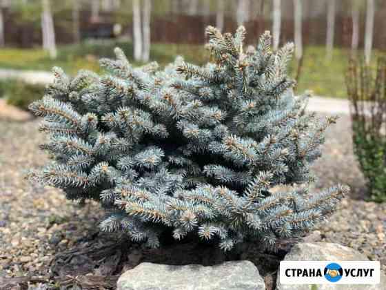3D Проектирование, озеленение и благоустройство Новосибирск